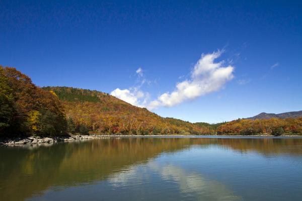 琵琶池 image