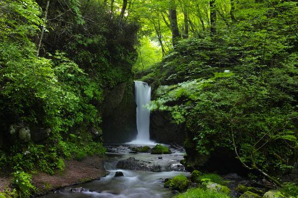 竜返しの滝(すずが滝) image