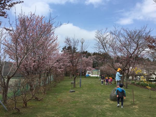 古丹別緑ケ丘公園 image