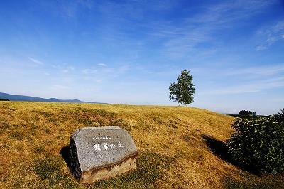 新栄の丘展望公園 image