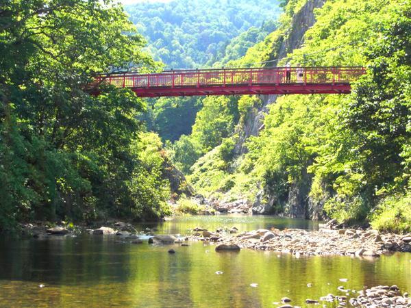 二見吊橋 image