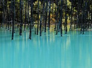 ชิโรงาเนะ อาโออิ-อิเกะ (บ่อน้ำสีฟ้าแห่งชิโรงาเนะ) image