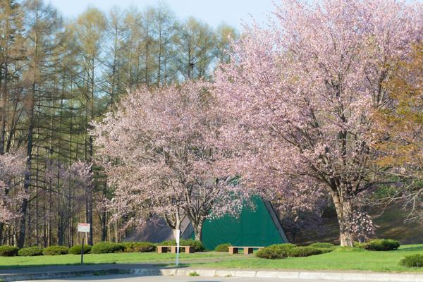ふきだし公園 image