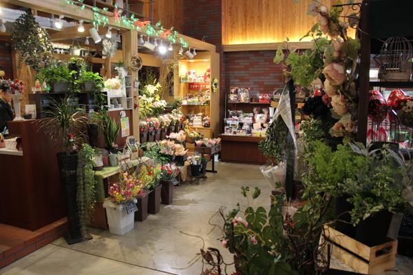 ร้าน Asahikawa Craft Select Shop image