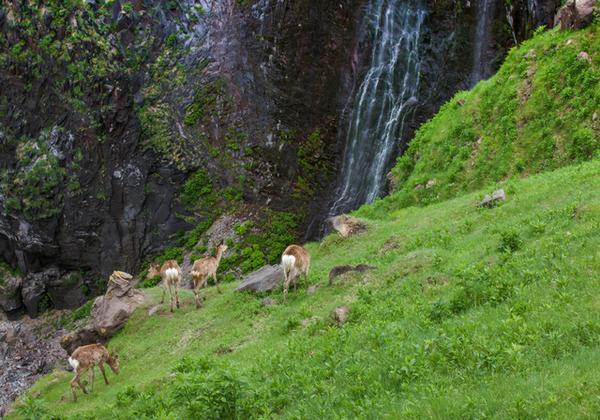 フレペの滝 image