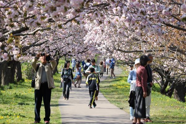 松前公園 image