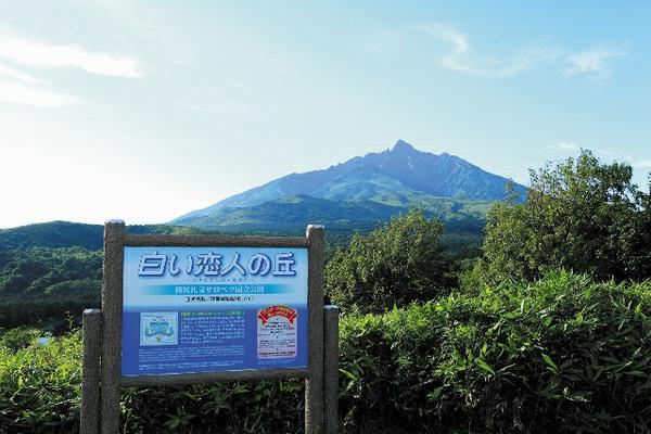 시로이코이비토의 언덕 image