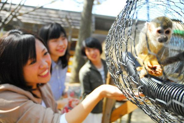 阿蘇元気の森(阿蘇ファームランド) image