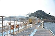 飛鳥磯釣り公園 image