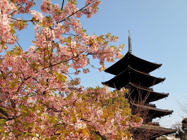 东寺(教王护国寺) image