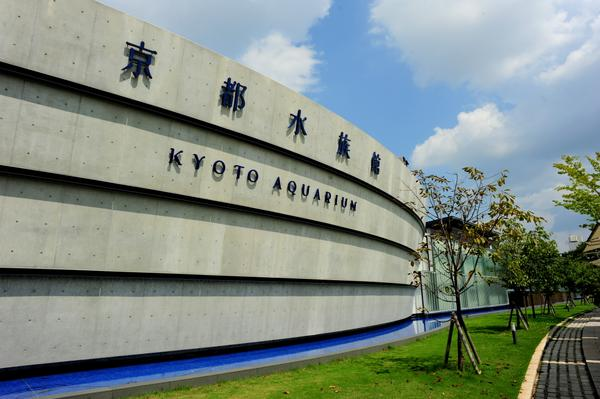 京都水族館 image