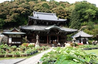 三室戸寺 image