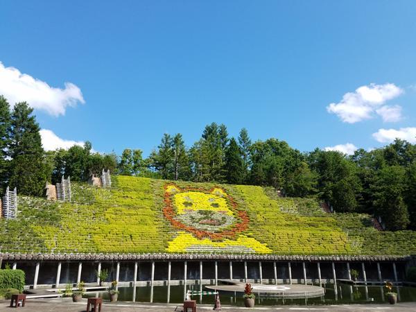 宇治市植物公園 image