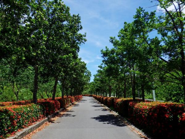 Banna Park image