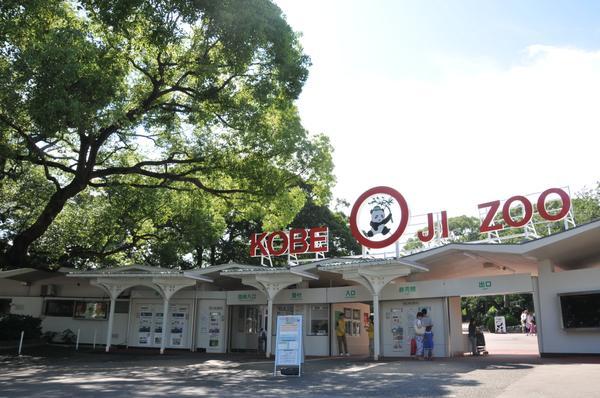 神戸市立王子動物園 image