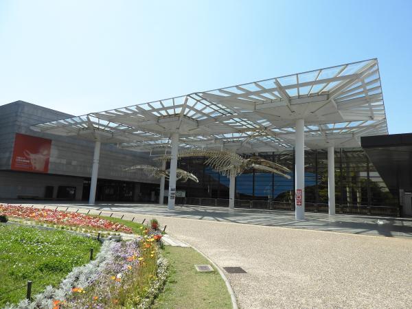 大阪市立自然史博物館 image