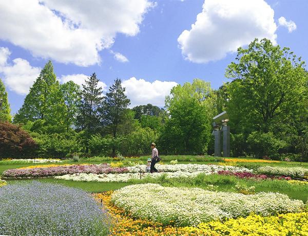 大阪府立 花の文化園 image