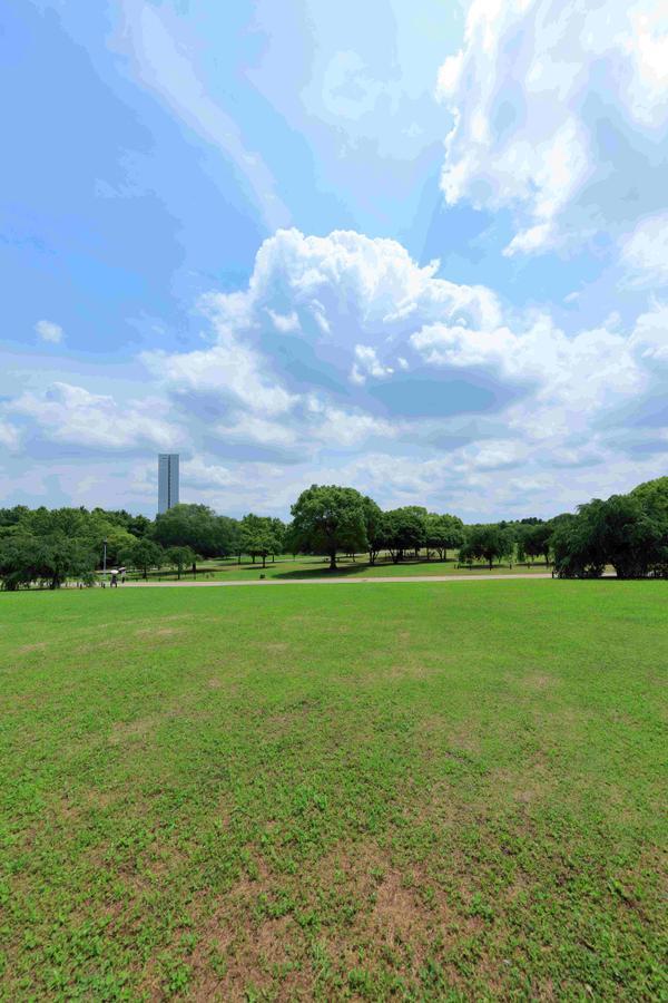 大仙公園 image