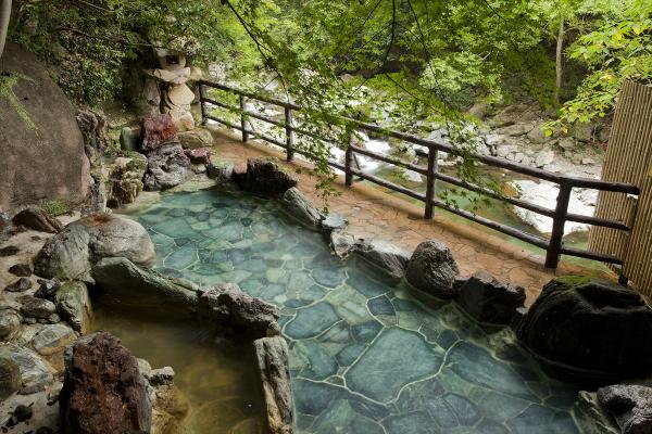 摂津峡 花の里温泉 山水館 image