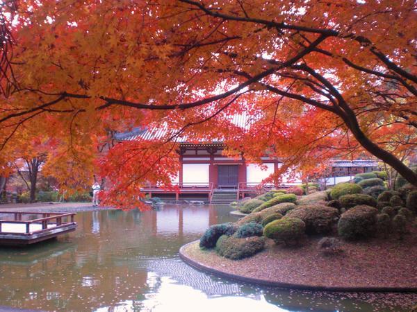 久安寺 image