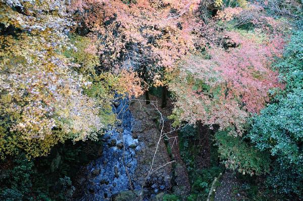 히라오카 공원 image