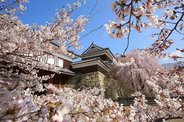 上田城跡公園 image