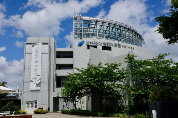 世界淡水魚園水族館アクア・トト ぎふ image