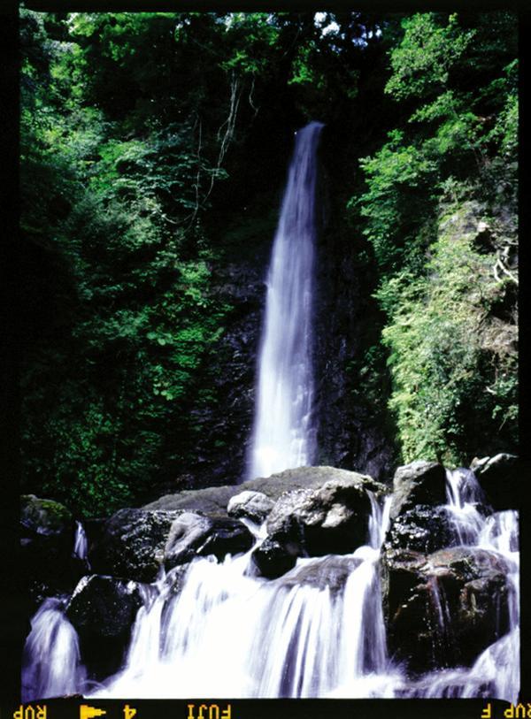 養老の滝 image
