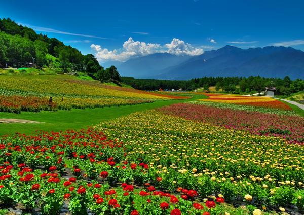 富士見高原リゾート花の里 image