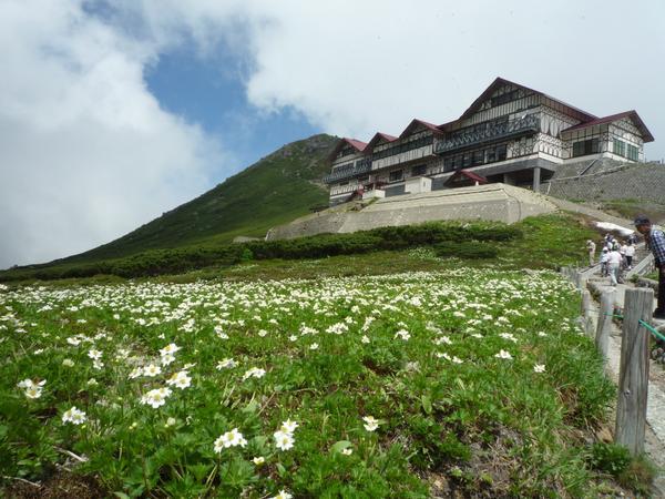 ทุ่งดอกไม้แห่งภูเขาโนริคุระดาเกะ image