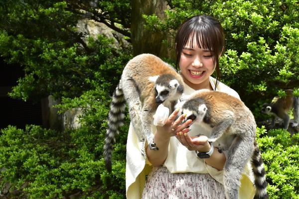 伊豆シャボテン動物公園 image