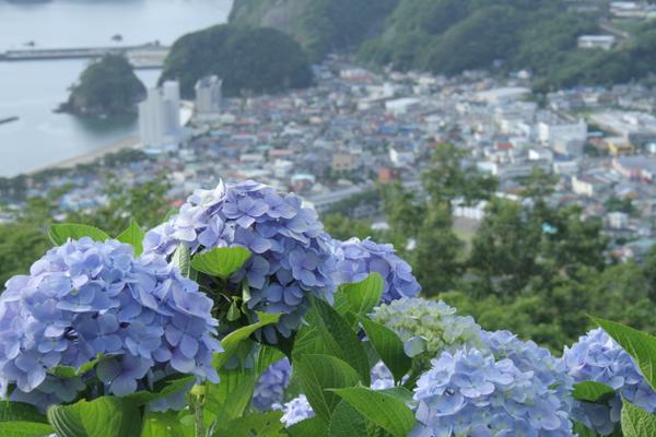 สวนอุชิบาระยามะโจมิน-โนะ-โมริ image