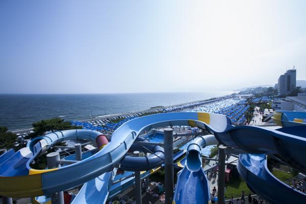 大磯ロングビーチ image