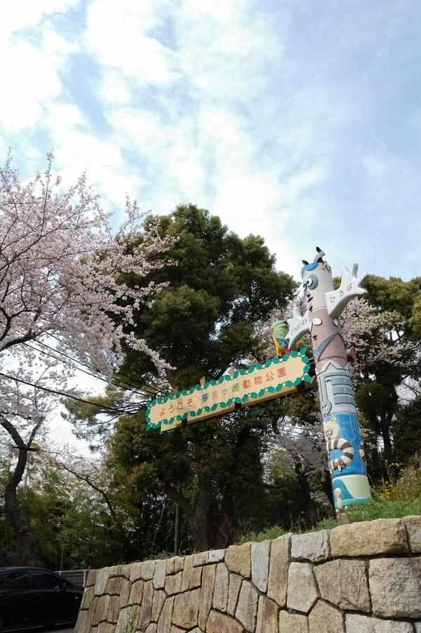 川崎市夢見崎動物公園 image