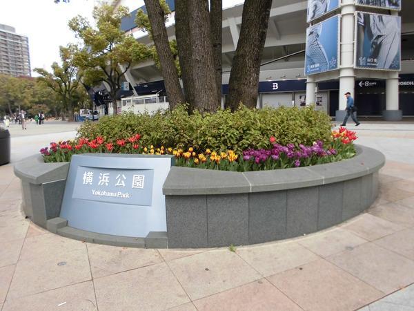橫濱公園 image