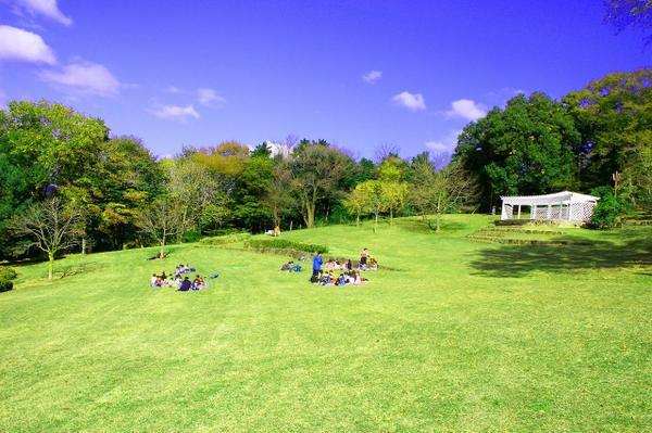 県立七沢森林公園 image