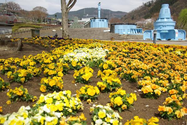 県立 相模湖公園 image