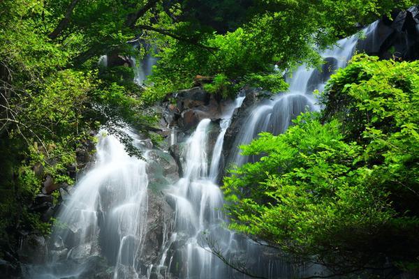 飛龍の滝 image