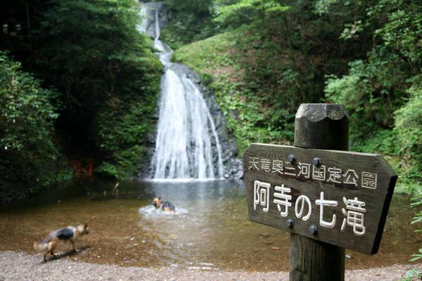 阿寺の七滝 image
