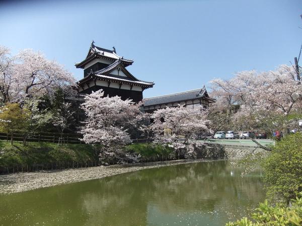 郡山城跡 image