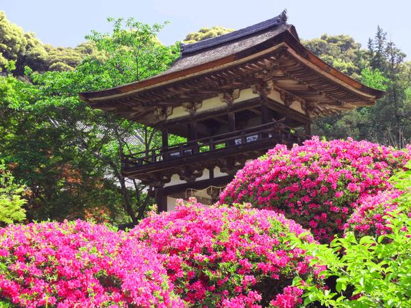 長岳寺 image