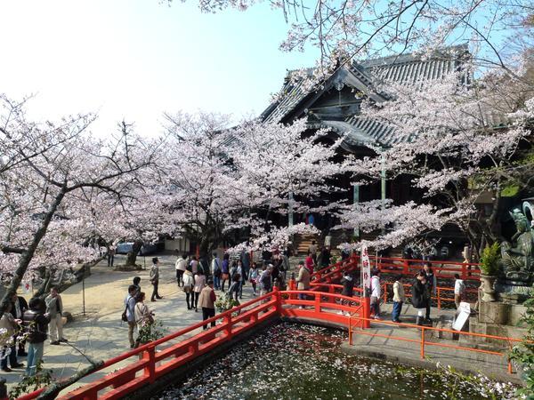 紀三井寺(紀三井山金剛宝寺護国院) image