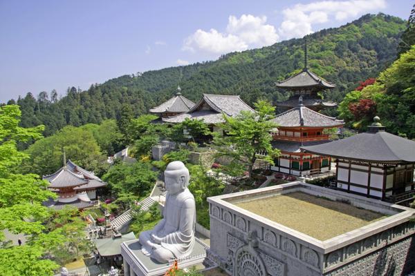 壷阪寺(南法華寺) image