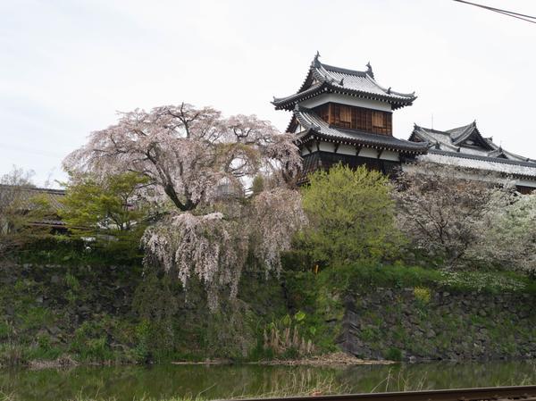 柳沢文庫 image