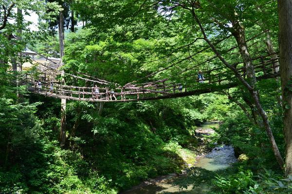 かずら橋 image