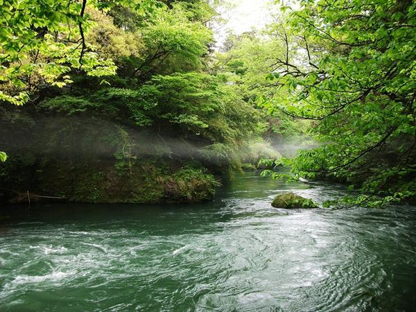 鶴仙渓 image