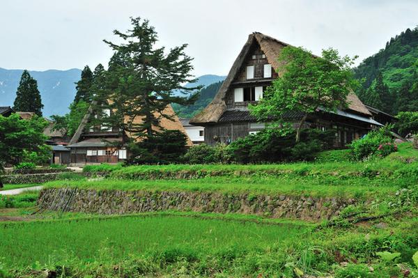 หมู่บ้านหลังคาทรงพนมมือไอโนะกุระแห่งเอ็ตจู-โกะคะยามะ image