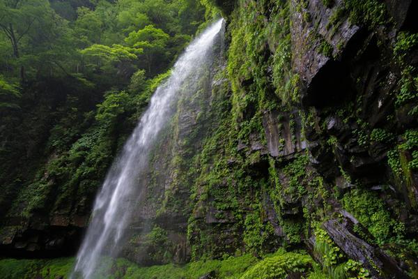 阿弥陀ヶ滝 image