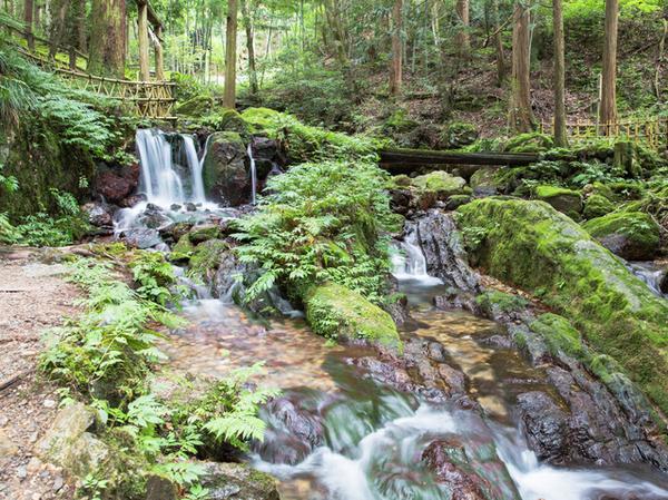 瓜割の滝 image