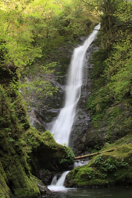 野鹿の滝 image